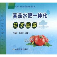 番茄水肥一体化技术图解