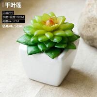 造生活多肉仿真植物假花盆栽盆景 塑料花迷你小肉肉方形陶瓷摆件
