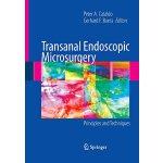 【预订】Transanal Endoscopic Microsurgery 9781489998910