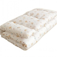 婴儿儿童床褥宝宝棉花小床垫被幼儿园秋冬加厚褥子垫背小孩子铺被
