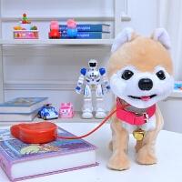 儿童电动玩具狗儿童毛绒玩具牵绳小狗会唱会走音乐电子宠物狗俊介