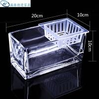 花瓶 玻璃桌面玻璃花鱼缸创意水培长方形花瓶透明容器植物清新鲜花简约风信子绿萝 中等