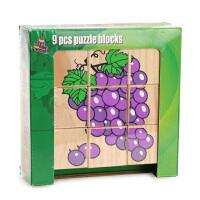 美国美声MAXIM 木质拼图 2岁以上儿童拼图玩具智力积木玩具 9粒装