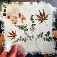 儿童diy手工古法造纸术造纸框纸浆植被花草纸创意再生纸画
