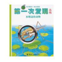 *畅销书籍* 第一次发现丛书 放大镜系列 水塘边的动物 +三字经
