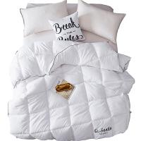 丝棉被冬被冬天被芯加厚保暖太空被冬季双人四季通用被子