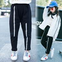 童装女童裤子春季新款儿童中大童韩版运动休闲外穿长裤潮