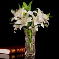 【支持礼品卡】客厅插花摆件水培富贵竹百合落地花瓶大号玻璃透明花器花瓶 加厚 jv7