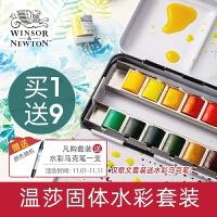 温莎牛顿歌文固体水彩颜料24色铁盒艺术家水彩颜料12色24色36色45色分装水彩套装8m全块半块水彩颜料塑料盒