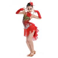 拉丁舞服装 儿童拉丁舞演出服女童亮片流苏少儿考级比赛舞蹈表演服装 玫瑰红色 120
