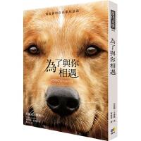 【现货】为了与你相遇  台版 一条狗的使命 电影书封版 A Dog's Purpose W 狗一生的意义 犬心所向电影小说 繁体中文版 温情治愈 忠犬八公导演新作 布鲁斯.卡梅伦Cameron