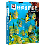 什么是什么·珍藏版(第3辑):各种各样的鱼