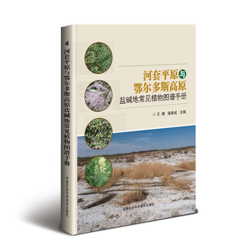 河套平原与鄂尔多斯高原盐碱地常见植物图谱手册