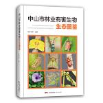 中山市林业有害生物生态图鉴(给孩子的自然图鉴,走进自然,青少年植物科普知识,植物百科。500余幅高清的昆虫和植物生态照