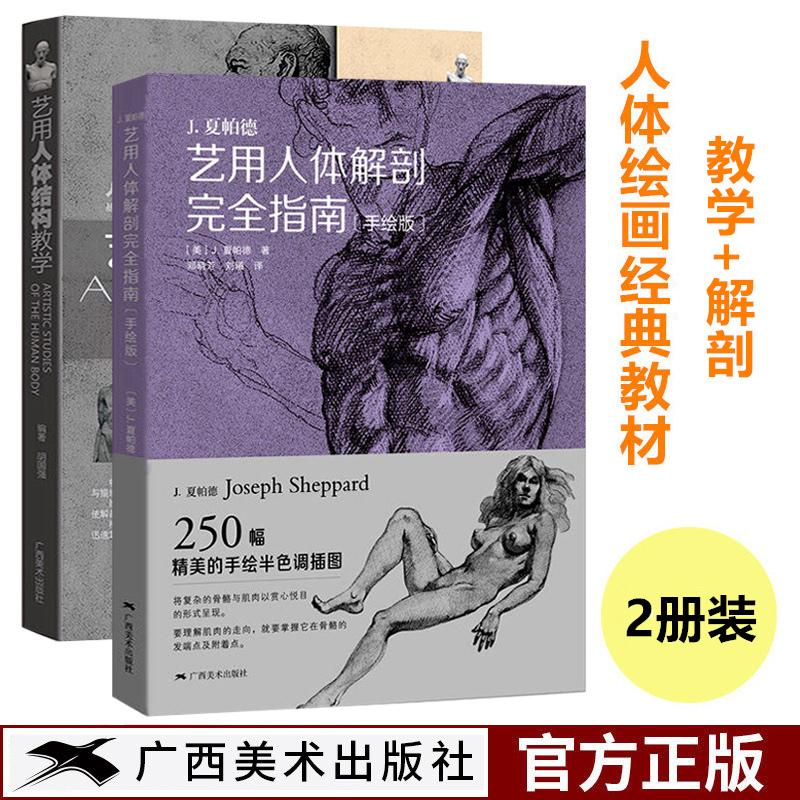艺用人体结构教学+解剖完全指南 理解人体形态素描临摹基础 人体绘画经典教材大师临摹造型人物解剖手绘教程 人物速写基础参考指南 图文并茂教你如何塑造头像人体的参考指南