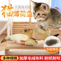 【支持礼品卡】猫棒磨牙玩具宠物毛绒仿真抱枕猫咪用品鱼玩具猫玩具鱼猫薄荷鱼逗 hv1