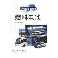 【新书店正版】燃料电池毛宗强9787502566845化学工业出版社
