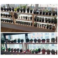 实木花架子木质层架 窗台多层办公桌花盆架 盆景架多肉植物架 95长*20宽*54高 3层