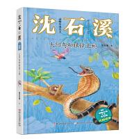 动物小说大王沈石溪・注音读本:太阳鸟和眼镜王蛇