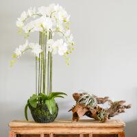 大型仿真蝴蝶兰盆栽整体花艺装饰品假花绢花客厅摆设摆件花卉