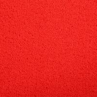 可裁剪丝圈地毯地垫进门门口入户门厅客厅门垫加厚防滑pvc脚垫子 红色 大红色