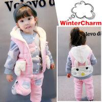 女宝宝秋冬装套装0一1-2-3岁韩版潮婴儿金丝绒女童洋气加绒两件套 粉色 加绒加厚兔子三件套