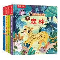 乐乐趣揭秘小世界系列(全4册)