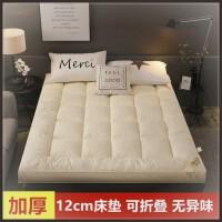 榻榻米床垫懒人可爱棉絮超厚日式踏踏米双人床环保出租房加厚