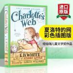 华研原版 英文原版 夏洛的网 外国儿童文学小说 Charlotte's Web 夏洛特的网 英文版正版进口英语书 彩色