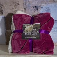 欧美双层法兰绒羊羔绒秋冬季毛毯加厚单双人盖毯珊瑚绒毯子