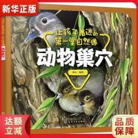 让孩子着迷的第一堂自然课――动物巢穴 童心 化学工业出版社9787122337245【新华书店 品质保障】