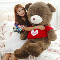 ?泰迪熊公仔毛绒玩具熊玩偶布娃娃1.6米抱抱熊情人节礼物送女友