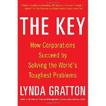 【预订】The Key: How Corporations Succeed by Solving the World's Toughest Problems 美国库房发货,通常付款后3-5周到货!