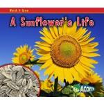 【预订】A Sunflower's Life
