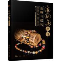 菩提子串珠选购与把玩 丁炜 化学工业出版社 9787122268426