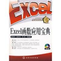 【RT1】Excel函数应用宝典(附光盘) 武新华,段玲华,李防 化学工业出版社 9787122039590