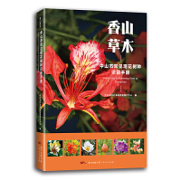 香山草木――中山市常见观花树种识别手册(给孩子的自然图鉴,走进自然,青少年植物科普知识,植物百科。)