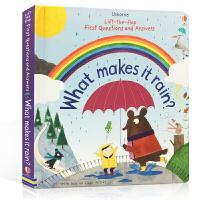 英文原版 What makes it rain?雨水怎样形成 一起探寻自然现象的奥秘 科普读物 亲子阅读