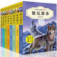 沈石溪动物小说全集系列全套8册正版 儿童读物7-10-12-15岁 三四五年级课外书必读的六年级初中小学生课外阅读书籍