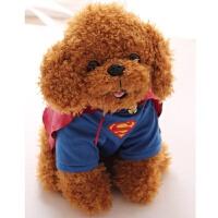 可爱超人泰迪狗狗玩具毛绒公仔 仿真红贵宾布娃娃生日礼物