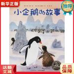 小企鹅的故事 (奥)米拉・洛贝(Mira Lobe) 9787556094448 新华书店 正品保障