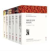 世界名著套装俄罗斯名著全套6册 童年在人间我的大学母亲钢铁是怎样炼成的复活猎人笔记 全译本中学生小说课外读物高尔基托尔