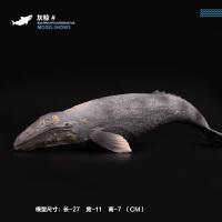儿童仿真海洋海底生物模型灰鲸座头鲸白鲸虎鲸鲨鱼锤头鲨鲸鲨摆件