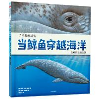 了不起的迁徙:当鲸鱼穿越海洋
