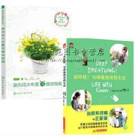 深呼吸!与绿植相伴的生活+室内花卉布置与栽培指南 室内植物绿化装饰书籍 家庭养花书籍种花书籍 花草养护方法 花卉种植技