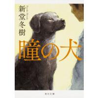 现货 【深图日文】瞳の犬 瞳孔的狗新堂冬树 KADOKAWA