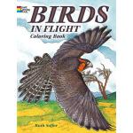 Birds in Flight Coloring Book