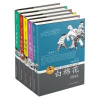黄蓓佳5个8岁系列长篇小说 星星索 白棉花等 全5册 儿童文学 正版