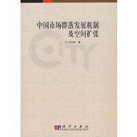 中国市场群落发展机制及空间扩张