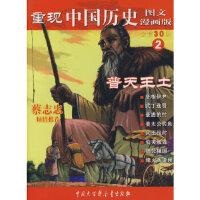 重现中国历史 普天王土(2) 张武顺 9787500078869 中国大百科全书出版社